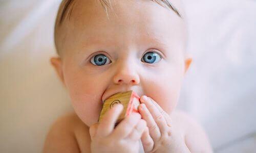 赤ちゃんは何を見ているのか?子育てに悩むパパとママが知りたい赤ちゃんの伝えたいこと