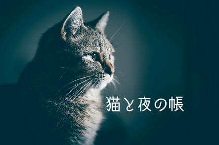 猫の夜泣きが断末魔にきこえてくるような夜の世界の話。
