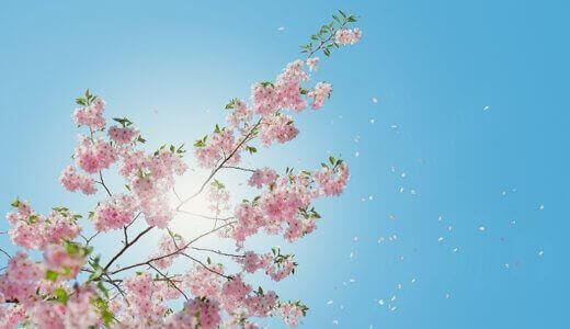 スピリチュアル的にみる春分の日は宇宙の新年?2020年はゲートが閉じるの?