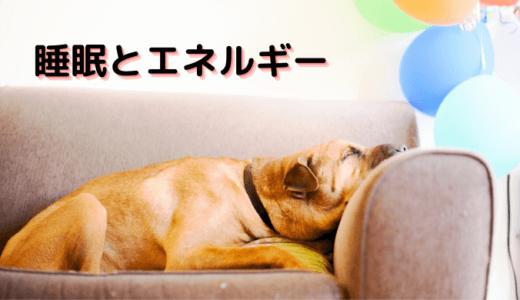 波動を味方にする睡眠方法!枕元に置くもので睡眠の質を上げるコツ